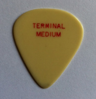 tinas picks pick plectrum collection vintage terminal
