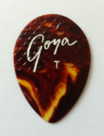 tinas picks pick plectrum collection vintage goya