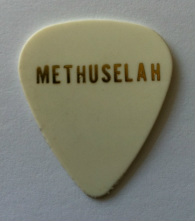 tinas picks pick plectrum collection methuselah