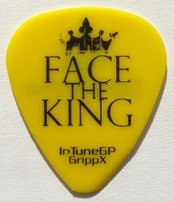 tinas pick collection tina picks plectrum face the king dan delvecchio