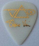 Tinas pick collection picks tina plectrum steve vai ibanez