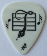 Tinas pick collection picks tina plectrum
